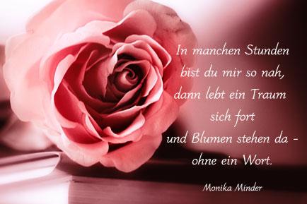 rosen sprüche englisch Rosen Zitate Geburtstag | gute zitate leben rosen sprüche englisch
