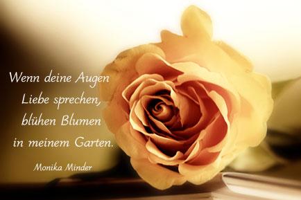 Zitate und spr che blumen top weisheiten spr che und zitate - Blumen zitate ...