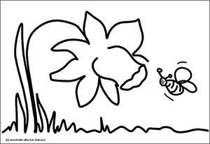 blumenbilder kostenlos - schöne fotos und zeichnungen mit