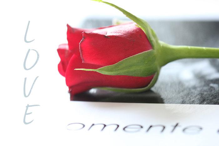 Geburtstag zum rosen sprüche Glückwünsche Zum